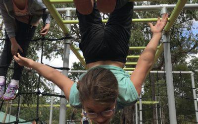 Play at Treetops